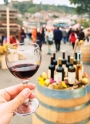 Young wine festival in Uzhgorod + thermal baths